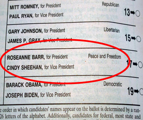 Roseanne Barr on ballot for President